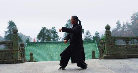 An Asian master of tai chi martial arts demonstrates tai chi in Wudang mountain China. Slow motion, red cinema camera hand held.