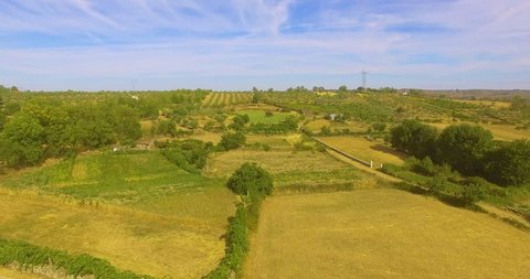 Crop Plantations in Portugal