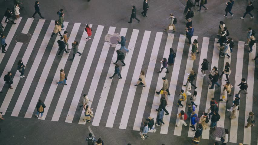 Aerial View Shibuya Pedestrian Crossing | Shutterstock HD Video #1027501721