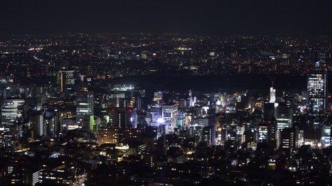 Aerial view of Tokyo city at night, Japan