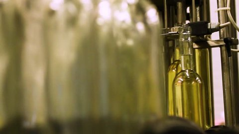 Wine Production Factory. Glass bottles filled up with white wine
