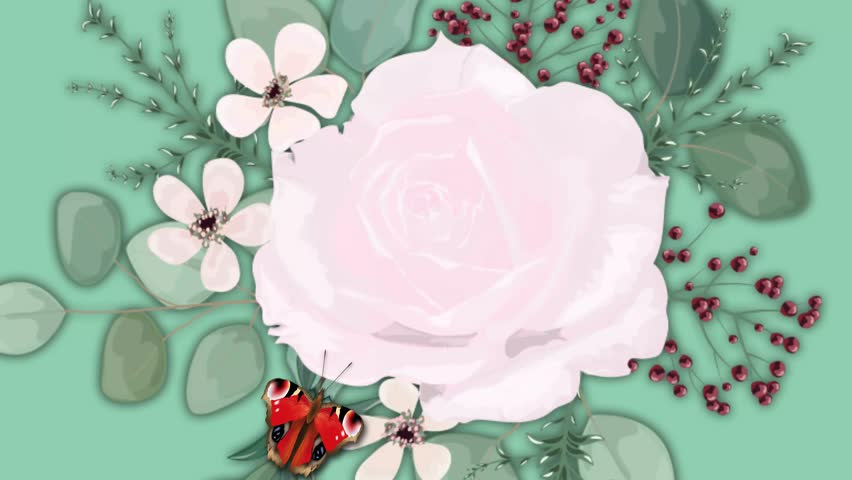 Background with Rose flower with butterflies. Modern design for summer projects. Animation.