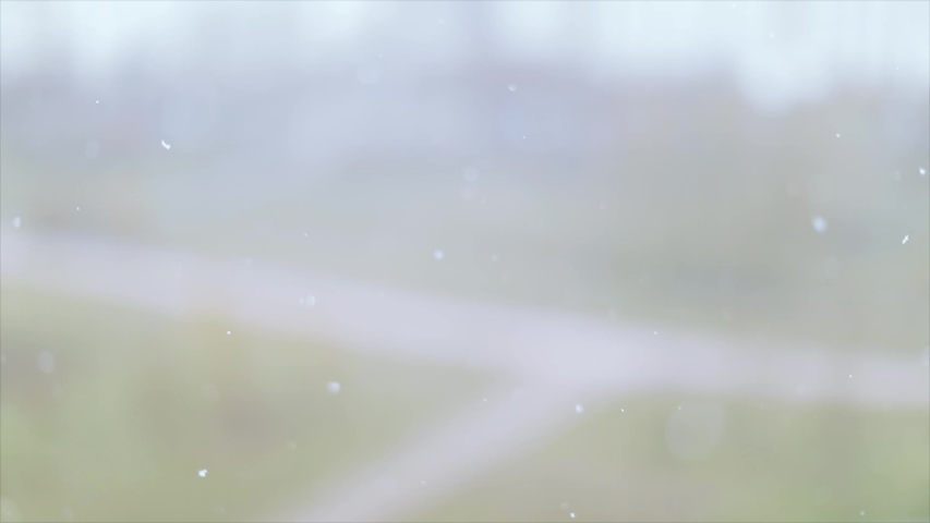 Spring snow on the background of young green city park | Shutterstock HD Video #1030002731