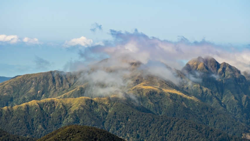 Foggy clouds moving over mountains ridge in Tararua Range Forest park in New Zealand wild nature Time lapse | Shutterstock HD Video #1030013411