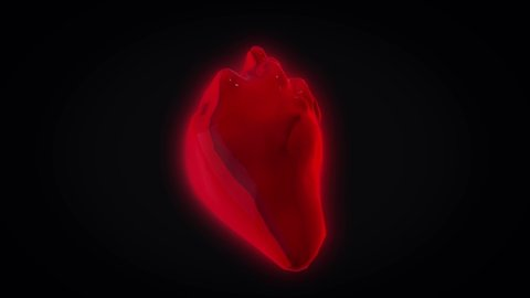 Abstract red realistic heart beating and rotating isolated on black background, seamless loop. Animation. Real human heart spinning and pulsating, medicine concept.