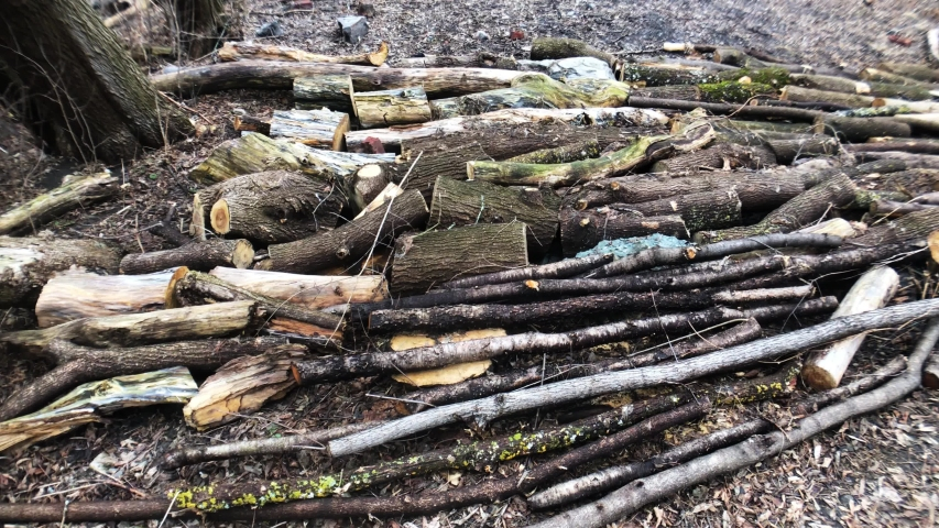 Piles of sticks on the ground in a forest area beside Sir John A Macdondald Parkway protecting it from The Ottawa River Flood 2019. | Shutterstock HD Video #1030146761