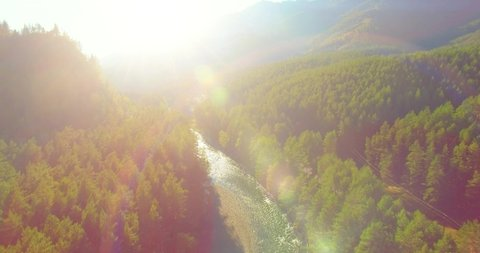 4K aerial point of view. Low altitude flight over fresh fast mountain river with rocks at sunny summer morning. Green pine trees and sun rays. Pure cold water stream.