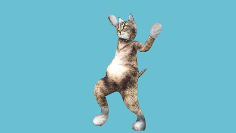 A cute brown pussycat dancing alone in a modern style in empty colour space. cat waving paws and tail in an energetic summer mood. Cool and the best moves in the stylish of the 80s and 90s