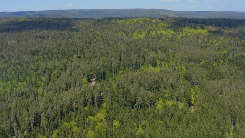 Aerial flight forward above trees in the Black forest   Shutterstock HD Video #1030457531