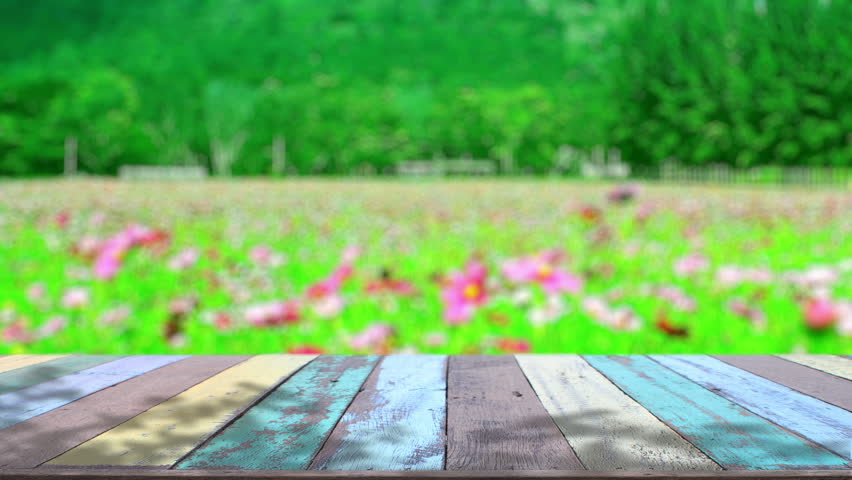 table top background hd. table top and blur nature of background stock footage video 10309271 | shutterstock hd b