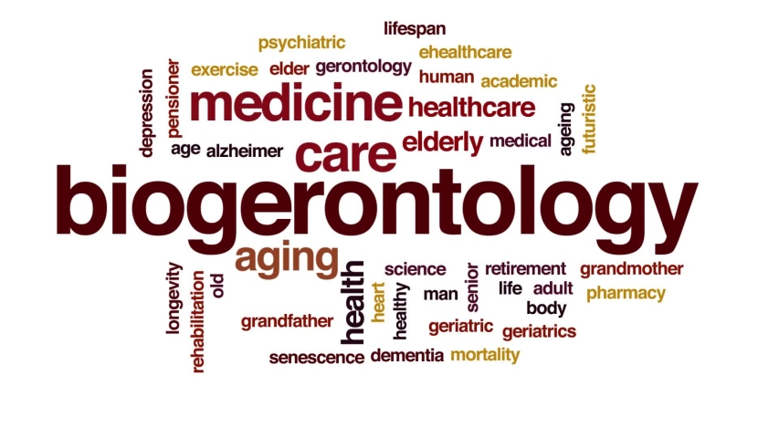 Biogerontology animated word cloud. Kinetic typography. | Shutterstock HD Video #1030961111