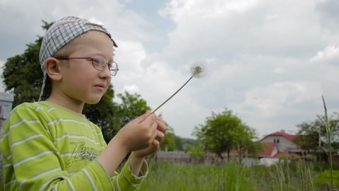 boy blows the dandelion,The boy in the eyepiece for vision blows the dandelion in the summer on the grass