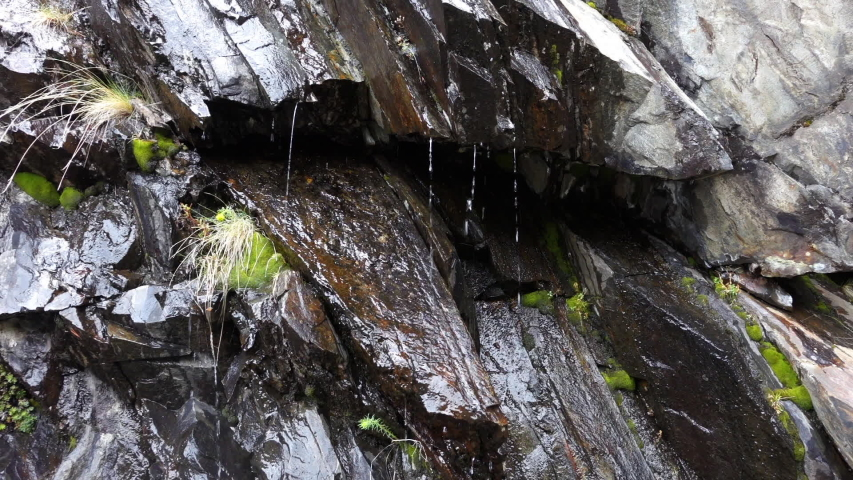 Seamless looping footage of water trickling down along a dark rock face with green moss. Background decorative video or illustration for nature and environment. | Shutterstock HD Video #1031021111