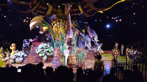 Disneyland, Hong Kong - May 17, 2019 : Festival of The Lion King performance in Disneyland Hong Kong