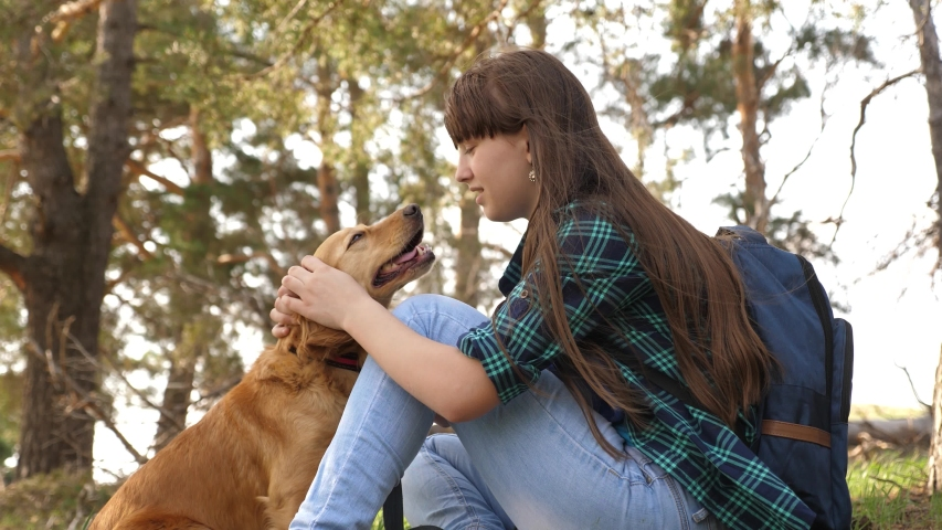 Beautiful girl travels with pet. tourist girl in forest on halt with dog. mistress plays with hunting hound. mistress caresses dog. Happy woman breeder dog walks with dog. Traveler with backpack | Shutterstock HD Video #1031569181