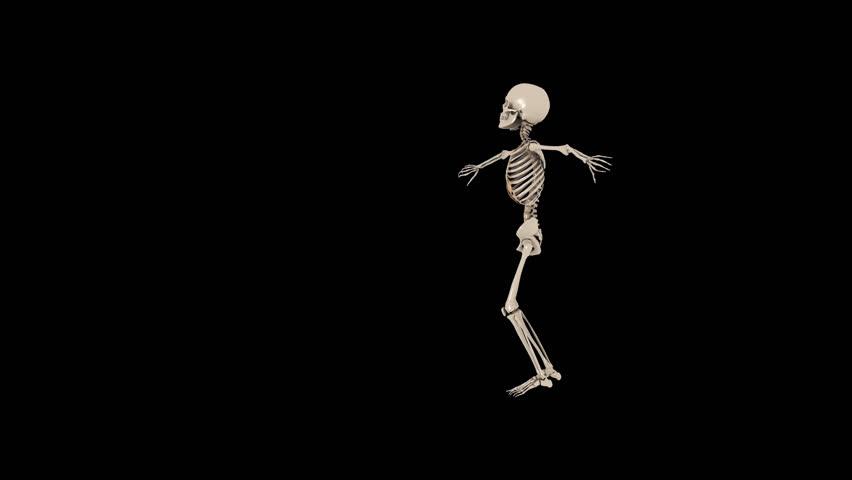 Funny Skeletons Hip Hop Street dancing - Thriller Transparent video with alpha channel. PNG + MOV