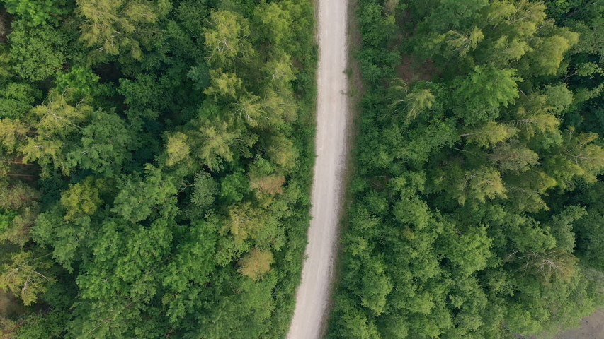 Bird's-eye view. Aerial view of forest road #1032985631