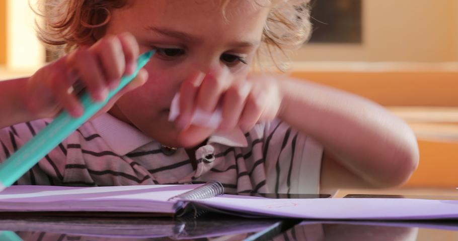 Portrait of little boy holding color pen | Shutterstock HD Video #1033447481