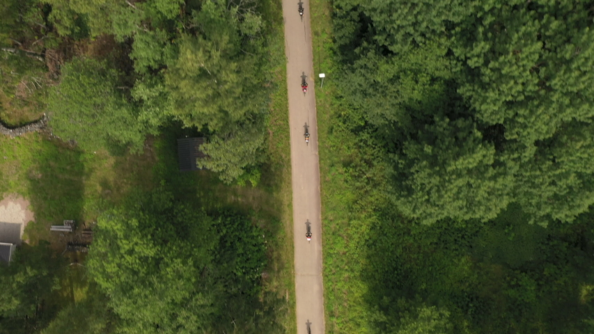Top-down drone footage following a group of mountainbikers riding on a narrow path in the pine forest. Filmed in realtime. #1034295131