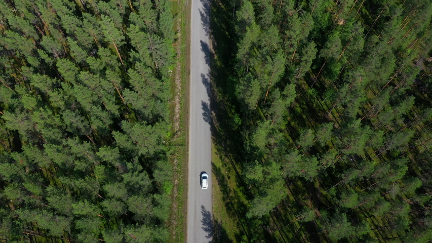 Aerial view of a car on a road in the wilderness #1035083531
