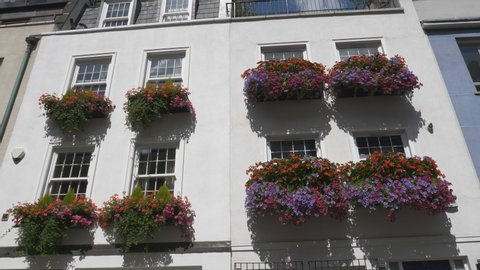 A residential building with flower pots on windowsills.