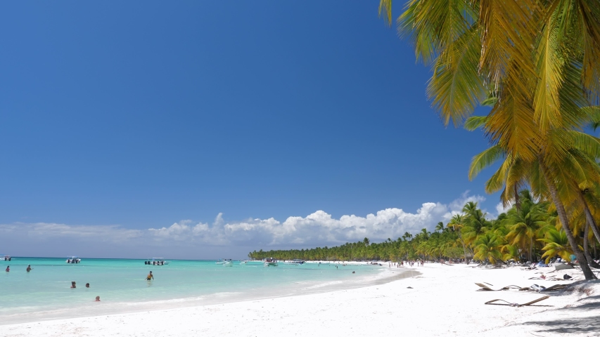 DOMINICAN REPUBLIC, SAONA ISLAND - 4.04.2019: People having fun on caribbean beach with palm trees. Travel destinations. Summer holidays | Shutterstock HD Video #1035157511