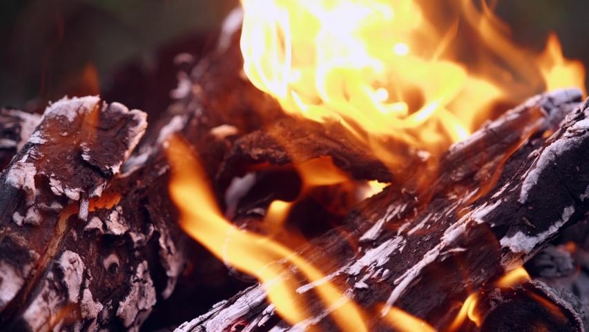 Money burned in the fire. Money burned in the fire | Shutterstock HD Video #1035341111