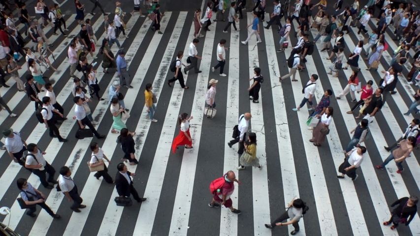 UMEDA, OSAKA, JAPAN - CIRCA JULY 2019 : Aerial blurred view of zebra crossing near Osaka train station. Crowd of people at the street. Shot in busy rush hour. Slow motion. #1036013291