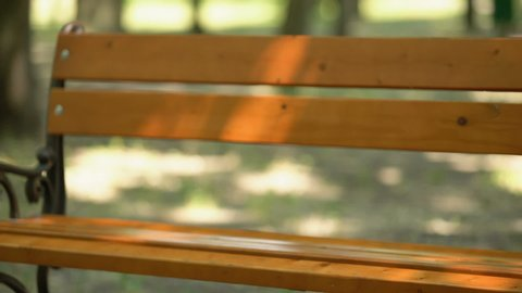 Female helping blind man with cane to sit on bench, volunteer services closeup