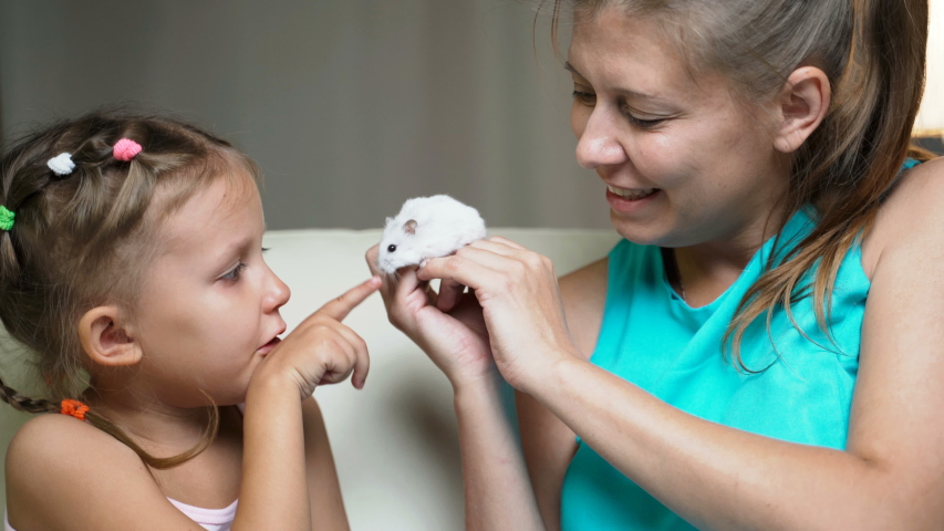 Little Girl Child Home On Sofa With Mother Playing Together With Pet Hamster   Shutterstock HD Video #1037314511