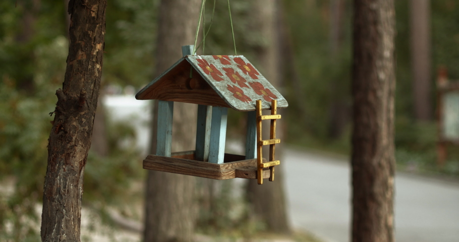 Beautiful wooden painted birdhouse hanging on a rope against the background of the forest | Shutterstock HD Video #1037355521