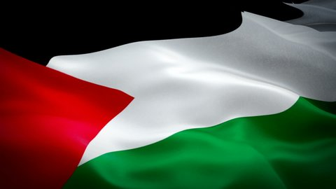 Palestine Waving Flag National 3d Palestinian Flag Waving Sign Of Palestine Seamless Loop Animation Palestinian Flag Hd Resolution Background