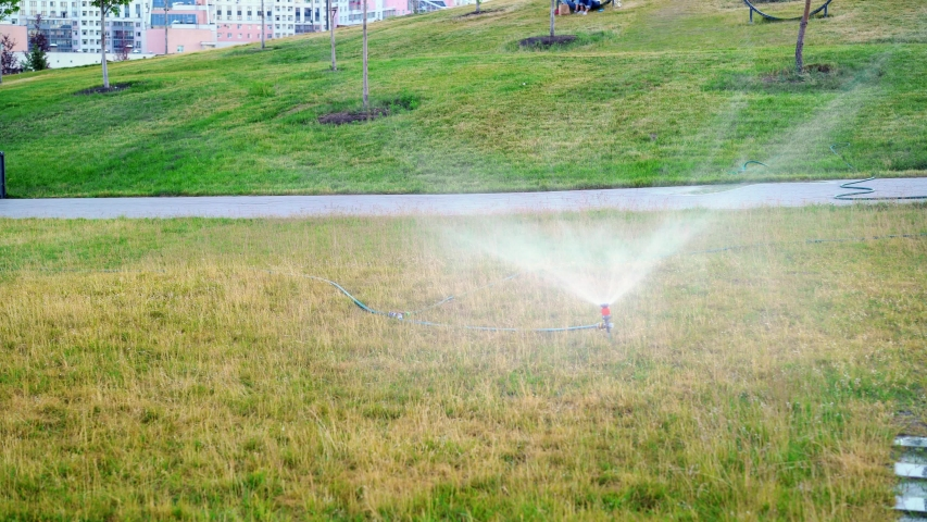 Automatic system working on the fresh green grass in city park on walking path. Automatic sprinklers spraying water on the grass in park | Shutterstock HD Video #1038695561