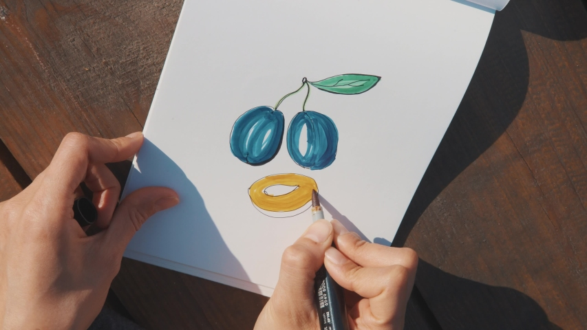 Drawing blue plum on white paper blank. Close shot. Top view. Designer at work. Artist drawing sketch. Selective soft focus. Wood background.  | Shutterstock HD Video #1039170521
