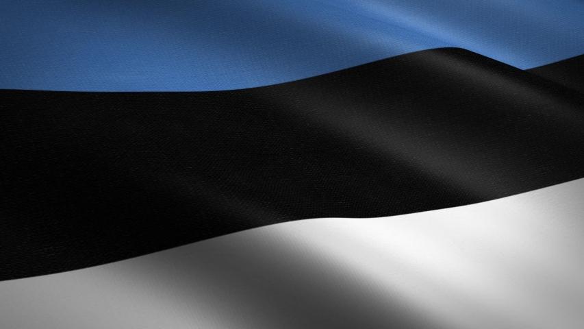 Estonian flag Closeup Loop - waving flag with highly detailed fabric texture seamless loop video. Seamless loop with highly detailed fabric texture. Loop ready in HD resolution 1080p 60fps | Shutterstock HD Video #1039208171