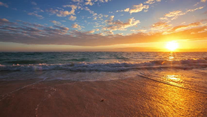 Exotic Beach in Dominican Republic, Punta Cana