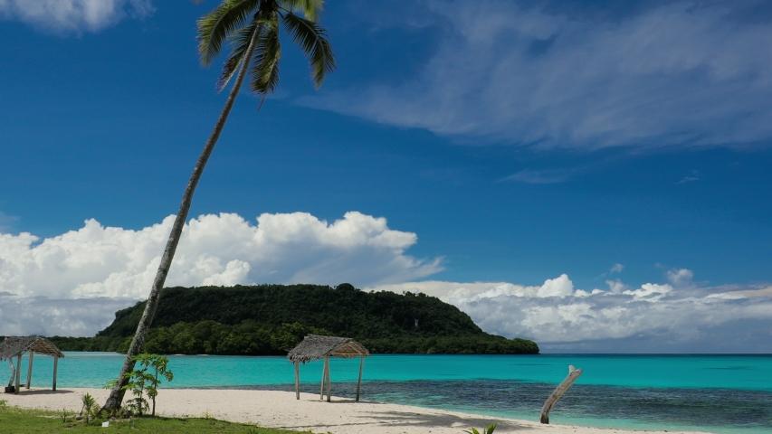 Port Orly sandy beach with palm trees, Espiritu Santo Island, Vanuatu. | Shutterstock HD Video #1045434631