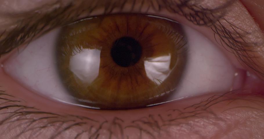 Female green-brown eye.  Extreme macro.   Shutterstock HD Video #1047112201
