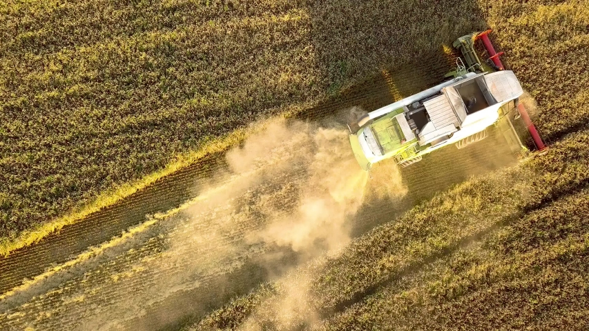 Aerial view of combine harvester harvesting large golden ripe wheat field. Agriculture from drone view. | Shutterstock HD Video #1047225331