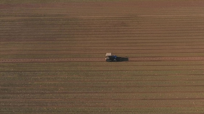 Tractor driving on field, plantation of lettuce outdoor. Aerial footage | Shutterstock HD Video #1047228931