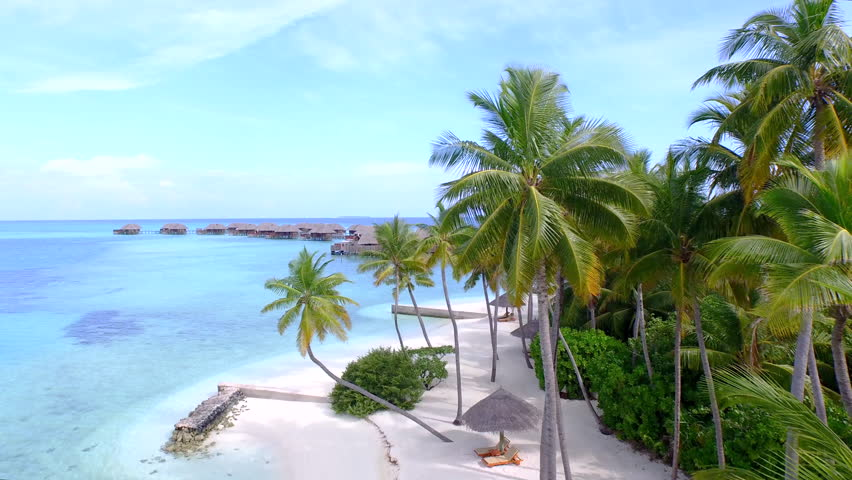 Aerial exotic white sand beaches palm trees and over for Palm tree villas 1