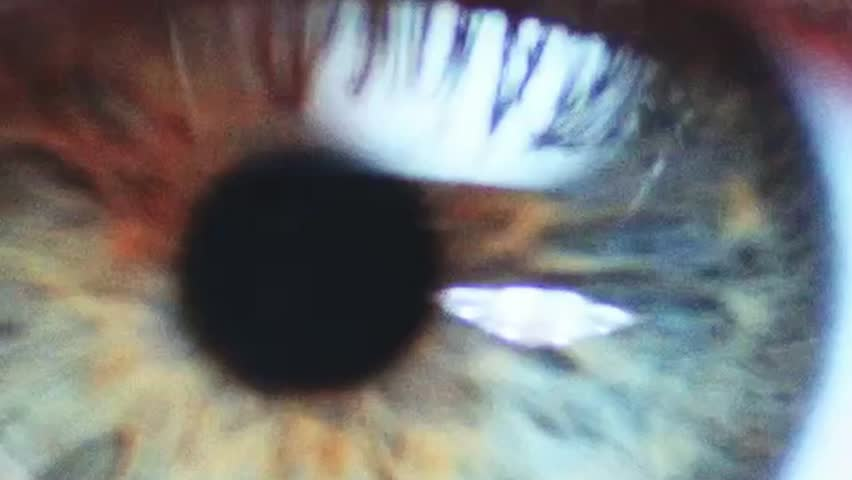 Macro Close-up eye blinking. Slow Motion, 120 fps, Zoom. Young Woman is opening and closing her beautiful eye.  | Shutterstock HD Video #11370317