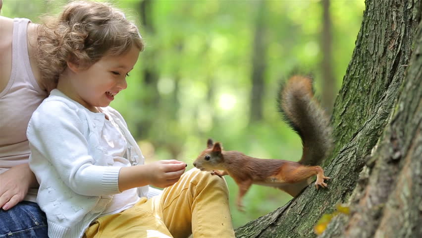 A cute little girl feed the red squirrels in the Park.