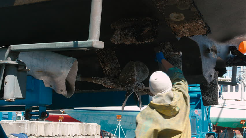 Barnacles on boat rudder and props being scraped off From twin prop boat Sept 2015
