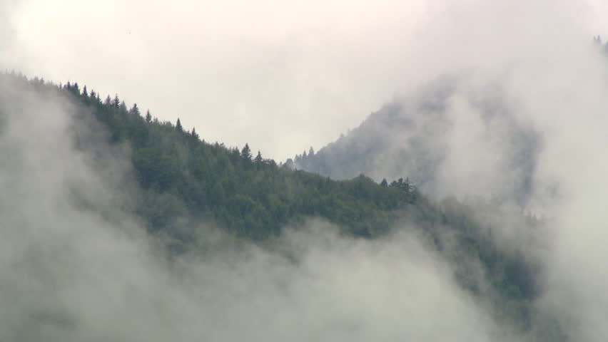 MS White thick clouds rolling above forested hills / Salzburg, Austria | Shutterstock HD Video #11747471