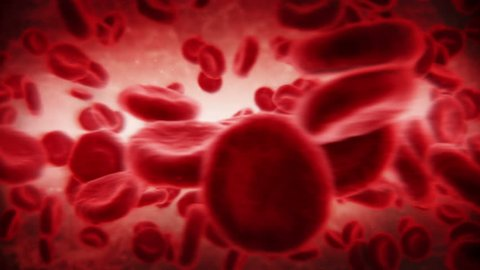 Red blood cells in an artery. Dark. 2 videos in 1 file. Red blood cells moving in the blood stream. 2nd shot is loopable. More colors available.
