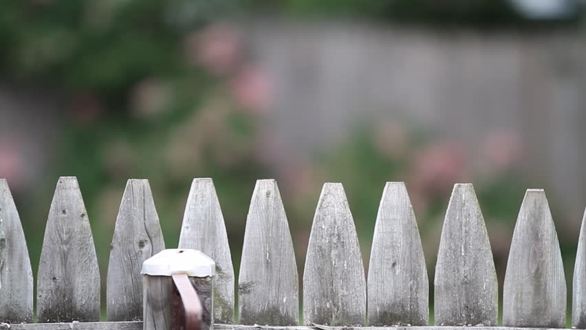 Old Fence Dolly Left To Right Hd 1080p Shot Of The Tip A Picket From Slow Motion Shallow Depth Field Flowers In