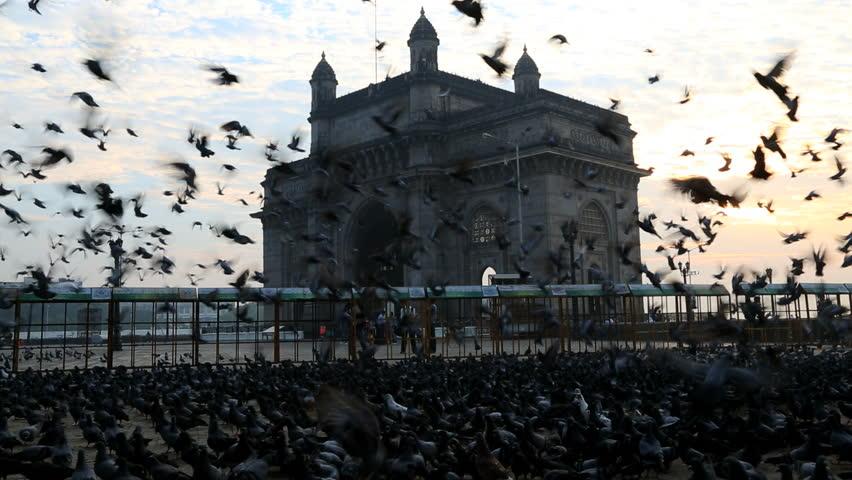 India - March 2015: Mumbai Gateway India Maharashtra Asia monument sunrise tower gate building wildlife sea harbour travel tourist