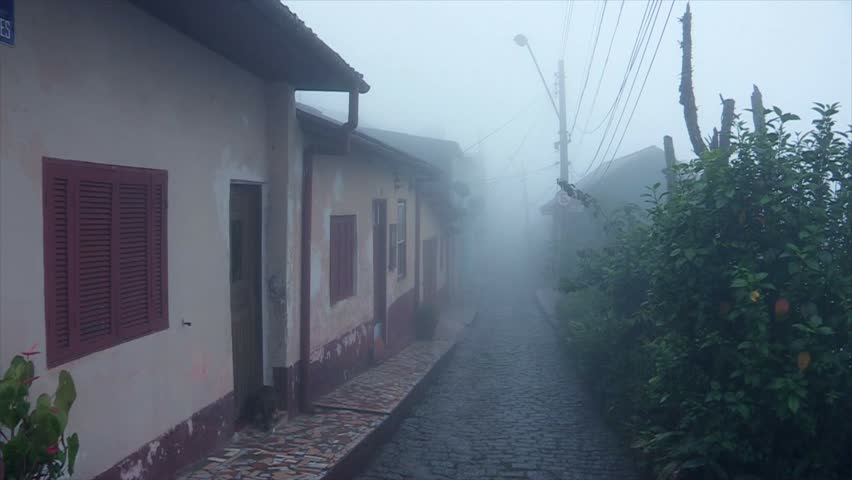 Small town mist / Rainy day in village #11945342