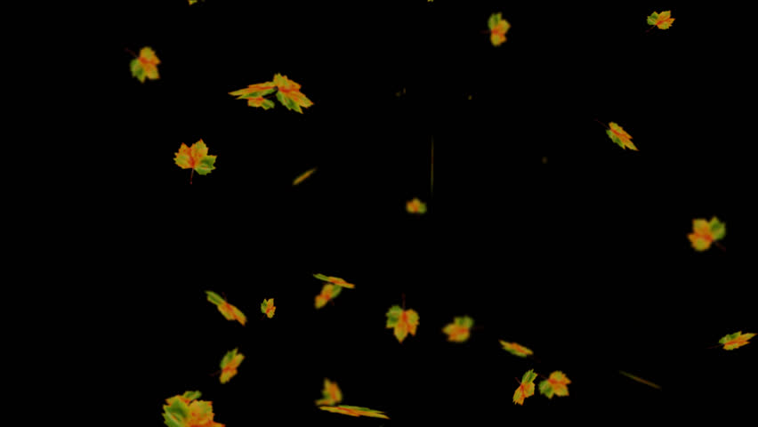 LOOP Alpha Channel Leaf Falling in Forest overlay for different !! | Shutterstock HD Video #12027461